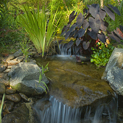 A waterfall in the inn's garden