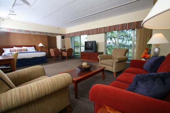 Maumee Bay King Room