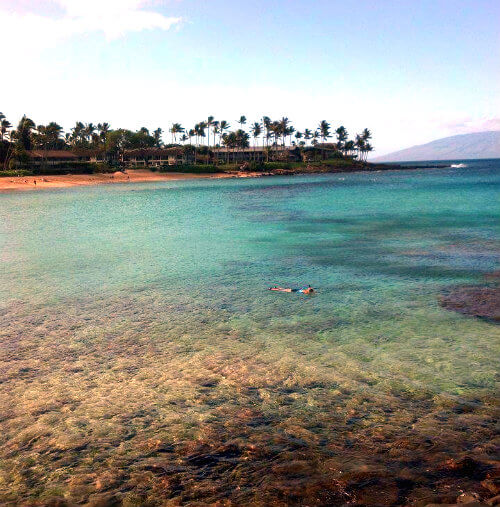 Napili Bay's protective reefs keep the water calm and clear