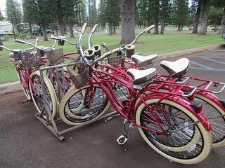 """Hotel Lanai"" bikes"