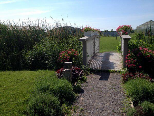 Waring House lawns IMG_5313