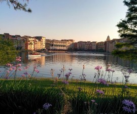 View across water Loews Portofino Bay Hotel