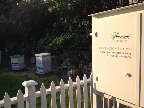 Beehives, Fairmont Empress, Victoria BC