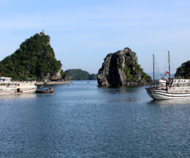 Boats anchored in Halong Bay