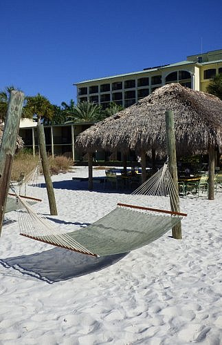 Rum Runners bar hammock