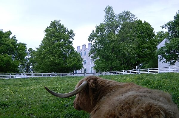 Shaker Village Inn Kentucky review