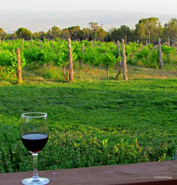 Western slope of Colorado,Leroux Creek Inn & Vineyards, Hothkiss