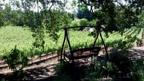 The grounds of Wine Country Inn offer plenty of secluded places to relax