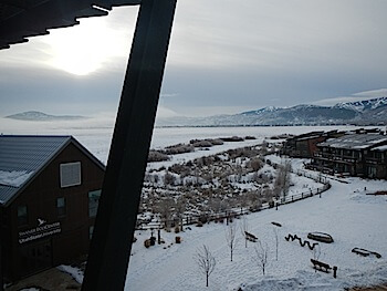 View from Newpark Resort Hotel over reserve