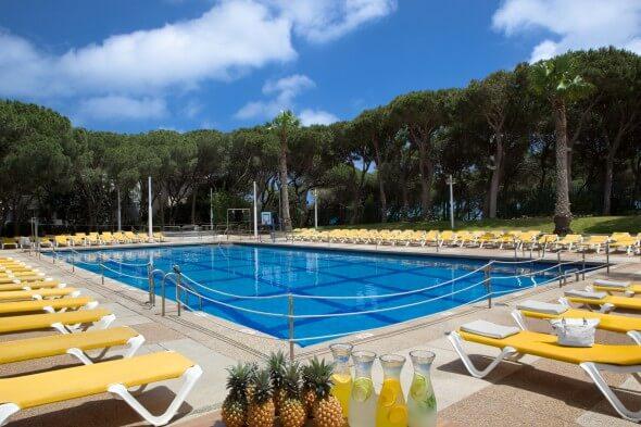 Dan Carmel pool