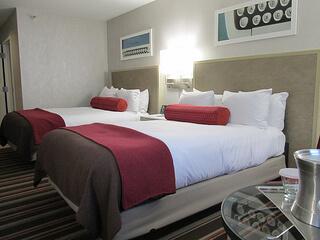 Hilton Standard Room
