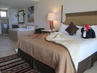 Villa del Palmar hotel room