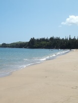 Beach at the Ritz-Carlton Kapalua