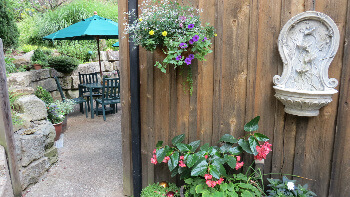 A glimpse at patio dining