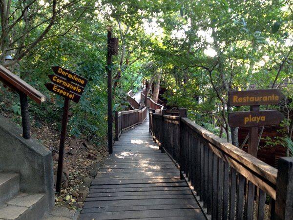 Walkways in the trees, Aqua Wellness Resort, Nicaragua