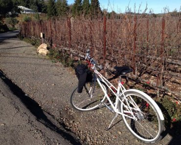 H2 Hotel, Healdsburg: Cool Digs & Plenty to Do in Sonoma Wine Country