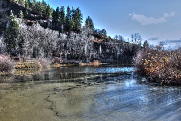 Pagosa High Country WildlifeViewingPond