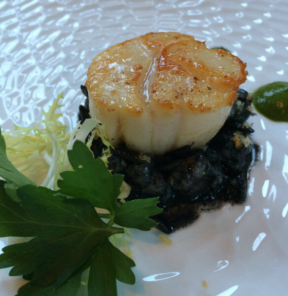 Seared scallop with, orzo a la nero, arugula green garlic pudding, and meyer lemon bread crumbs