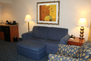 A suite living room with fold out couch.