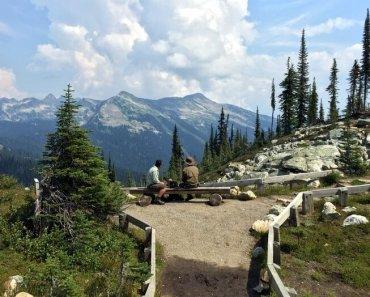 Mt. Revelstoke National Park, Revelstoke, BC, Canada
