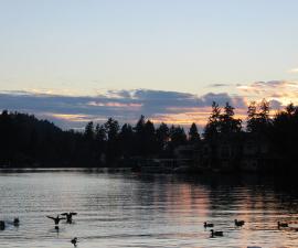 lakeshore inn, lake oswego, sunset