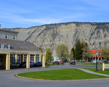 Observe the Wildlife at Yellowstone's Mammoth Hot Springs Hotel & Cabins