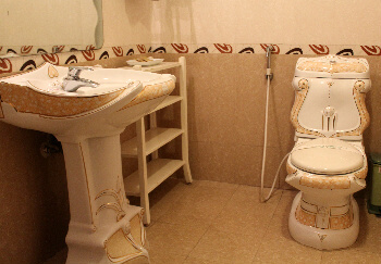 The bathroom with its palace motif.
