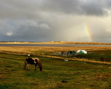 A Cozy Country Stay in Iceland at Guesthouse Vatnsholt