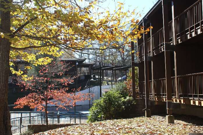 May Lodge guest rooms are situated in the midst of wooded beauty