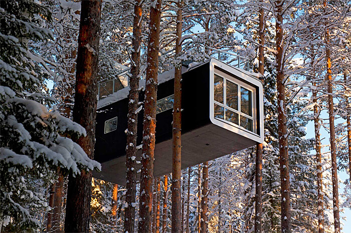 Cabin, photo courtesy of the Treehotel