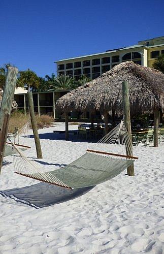 Rum Runners bar hammock