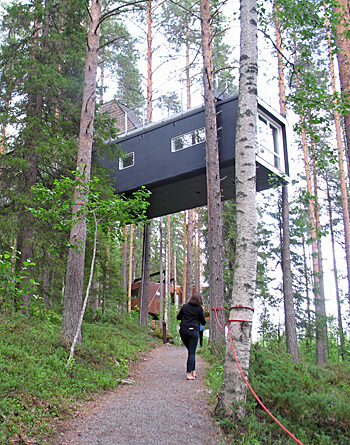 The Cabin at Treehotel, Sweden (Photo by Susan McKee)