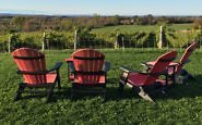 Vineyard views, The Resting Place at Coffin Ridge Winery, Grey County, Ontario, Canada