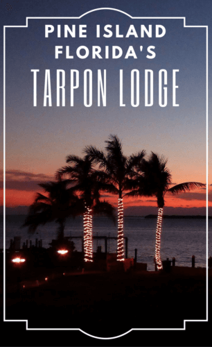 Tarpon Lodge is a quiet inn facing the Gulf of Mexico on Pine Island, Florida, north of Fort Myers and Sanibel Island.