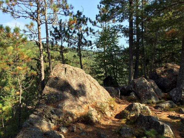 Hiking trail, Samuel de Champlain Provincial Park, Mattawa, Ontario, Canada