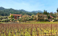 Pet-friendly Wine Country Inn in Napa Valley