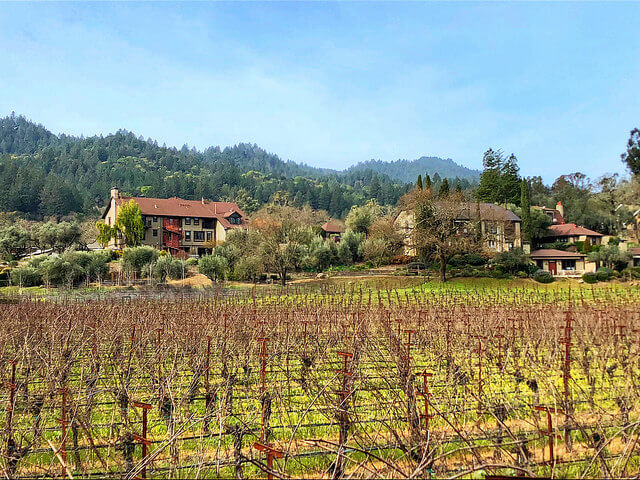 wine country inn, st. helena, napa valley, california, vineyards