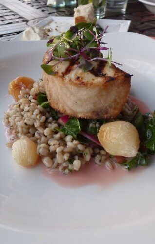Swordfish on herb barley at Shor Restaurant, Hyatt Regency Clearwater Beach in Florida
