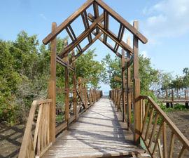 cuba, melia jardines del rey beach boardwalk