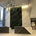 Green wall and lobby of Hotel Trio in Healdsburg