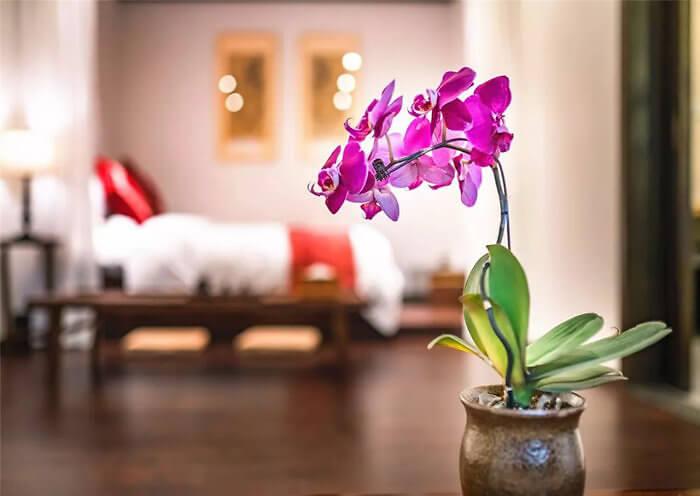 Dasein Youlan Hotel Room