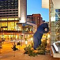 The Mile High City's iconic Big Blue Bear & Hyatt Regency Denver at the Colorado Convention Center #Denverhotel
