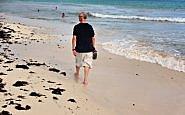 Fun in the Sun at Reef Playacar, Riviera Maya