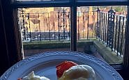 eggs benedict, breakfast at b+b edinburgh scotland