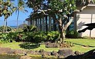 exterior shot of Hilton Garden Inn on Kauai