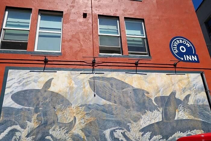 Humpback whale mural Silverbow Inn