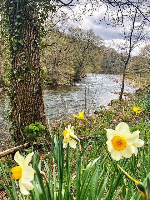 river usk, gliffaes country house fishing lodge, brecon beacons national park wales