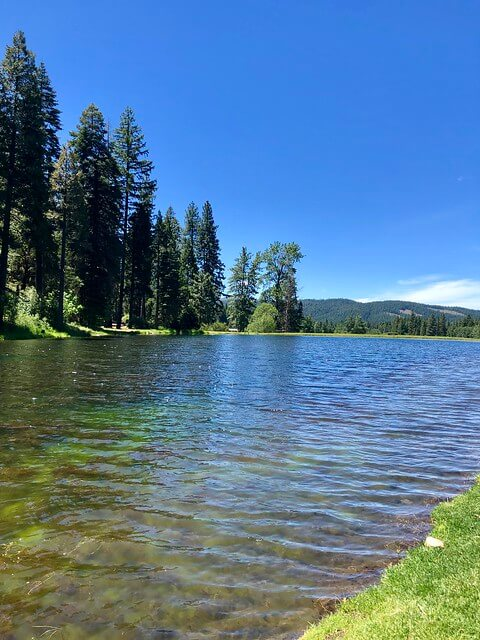 trout pond, greenhorn ranch pond, plumas county california