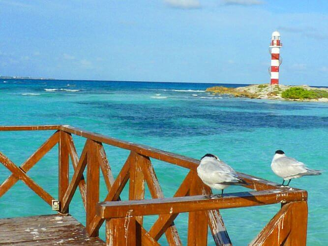 Hyatt Ziva Cancun pier