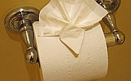 Toilet paper, Watkins Glen Harbor Hotel, Watkins Glen, New York (Photo by Susan McKee)